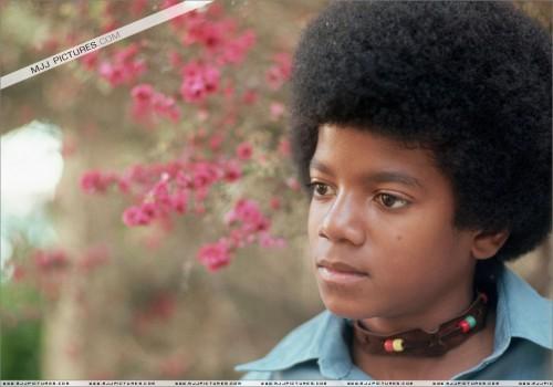 1971-HenryDiltzPhotoshoot8.jpg